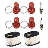 OxoxO faciles à 36905Filtre à air avec 36045Couche d'apprêt Ampoule Bougie...
