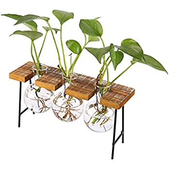 d83b5d6da57d GUOLIAN Hydroponic Vase Home Décor - Vase for Flowers   Planter ...