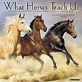 What Horses Teach Us 2018 Wall Calendar
