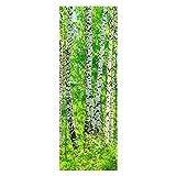 wandmotiv24 Türtapete Birkenwald Tapete Tür Türaufkleber Türbild Aufkleber 70 x 200cm (B x H) - Dekorfolie selbstklebend