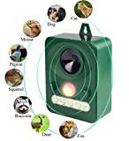 AG-So-So Cat Repellent Ultrasonic Animal Repeller Solar Powered Ultrasonic Animal Control Repellent Deterrent Cat Scarer Waterproof With LED Flashing Ligh for Cat, Dog, Fox, Squirrel, Rat, Bird