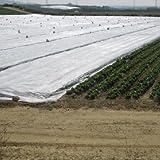 Manta térmica de 4,10x12 metros para proteger cultivos, plantas y árboles de exterior de las heladas. Malla anti-heladas. Protector plantas.