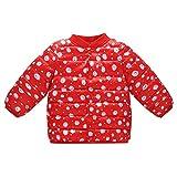 NPRADLA 2018 Baby Steppjacke Leicht Kinder Übergangsjacke Jacke mit Ohren Kapzuenjacke Mädchen Jungen Herbst Winter(Rot,100/18-24 Monate)