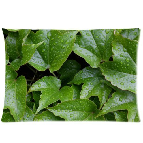 Mina-Shop Green Leaves Wet Water Two-Side Polyester Pillowcase 20x30 Inch