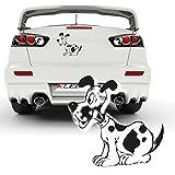 lustige Hundeaufkleber für die Heckscheibe Sticker Dog Dekoration Hunde Motive zum Verkleben |025V32