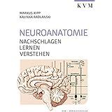 Neuroanatomie: Nachschlagen, Lernen, Verstehen