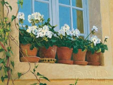 12-inch Terra Cotta (Chateau creancey Fenster von Novak, Shirley–Fine Art Print erhältlich auf Leinwand und Papier, canvas, SMALL (16 x 12 Inches ))