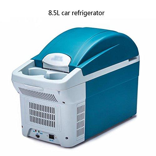 Peaceip 8.5L Auto/Haushalt Mini-Kühlschrank - Mini Haushalt Kühlschrank/Studentenwohnheim Kühlbox/Muttermilch Kühlschrank/Kleine tragbare Kühlschrank (größe : A)