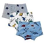 Color Culture Boys Cotton Underwear/Briefs/Boxers (Multicolor:Pack of 3)