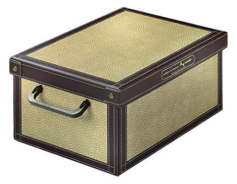 LAVATELLI 026 TA Baulino Boîte de Rangement en carton Plastifiée Tapirus 35 x 25 x 17,5 cm