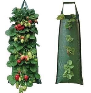 2 x stoff zum aufh ngen pflanzbeutel plant tasche tomate kr uter blume erdbeere in. Black Bedroom Furniture Sets. Home Design Ideas