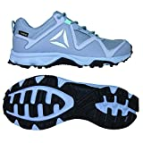 Reebok Franconia Ridge 3.0 GTX Damen Laufschuhe,, grau (Cloud Grey/Cool Shadow/Black/Blue Lagoon)
