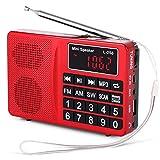 Best Las radios portátiles - Prunus Radio portatile Sw/FM/Am(MW)/SD/TF/USB(0-64 GB) MP3 con altoparlante Review