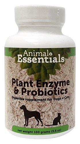 Artikelbild: Tier Essentials-PLANT ENZYMEN PROBIOTICS (Verdauung) Hund Katze 100 g