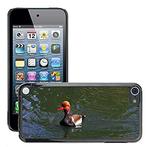 Just Phone Cover Hard plastica indietro Case Custodie Cover pelle protettiva Per // M00139732 Pochard Red Headed Pochard Canard // Apple ipod Touch 5 5G 5th