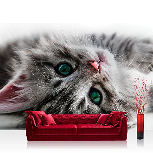 Fototapete 368x254 cm PREMIUM Wand Foto Tapete Wand Bild Papiertapete - Tiere Tapete Katze Kätzchen Kitten Tier Fell Augen grau - no. 2960 -