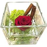 Rosa estabilizada perfumada 8 x 8, color Rosa