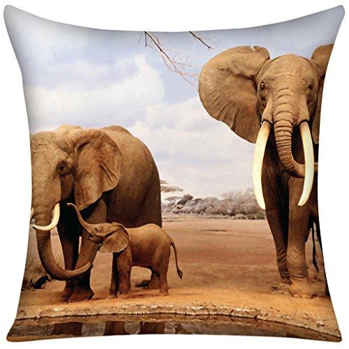violetpos-federa-elefante-africano-prarie-casa-home-decor-gettare-cuscino-50-x-50-cm