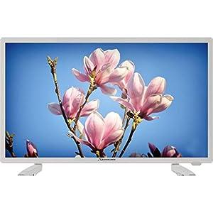 SCHAUB LORENZ LD215-M15FHW TV LED Full HD 53 cm (21.5'') - 1 x HDMI - Classe énergétique A - Blanc