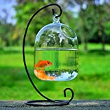 SHINA Creative Hanging Glas Vase Fisch Tank Transparente Fishbowl Home