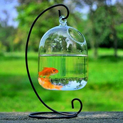 SHINA Creative Hanging Glas Vase Fisch Tank Transparente Fishbowl Home Dekorative Schalen mit schwarzem Stand (Schwarz Stand)