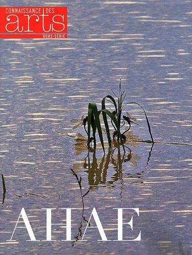 Connaissance des Arts, Hors-série N° 540 : Ahae : Exposition par Guillaume Morel