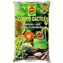 Tierra para cactus y suculentas y crasas
