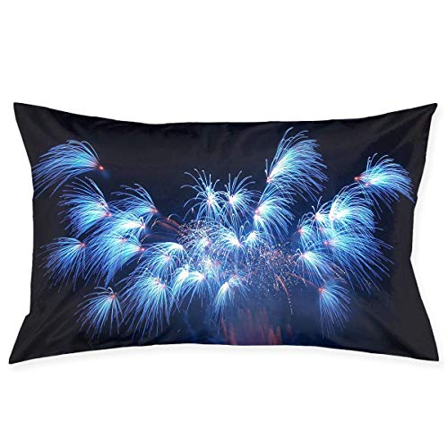 Beautiful Moving Fireworks Graphics Pillowcase - Zippered Pillowcase, Pillow Protector, Best Pillow Cover - Standard Size 20x30 Inches, Double-Sided Print (Halloween Moving Floor)