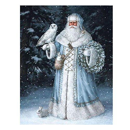 Rawuin 5D Santa Claus Diamant-Stickerei, Kreuzstich DIY Kunst Craft Home Decor (#843)