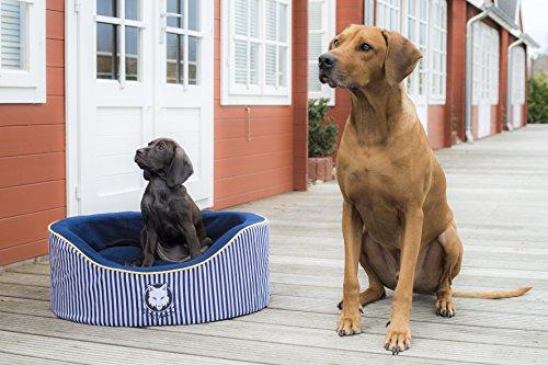 Nordwolf Strandkorb Hundebett, Größe:S (L65 x B55 x H25 cm)