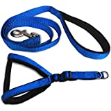 Smarty Pet Nylon with Blue Padding Dog Harness 1 inch Black - (Medium)