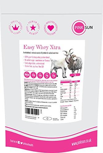 Whey Protein Konzentrat Pulver 1kg aus Ziege- und Schafmilch Sojafrei Hormonfrei und auf Grünfutterbasis - PINK SUN Easy Whey Xtra Sheep Goat Whey 1000g (Protein Schafe)