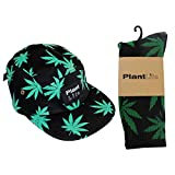 plantlife® Cap Kappe Hanf Socken Hanf Set - Farbe: schwarz/grün