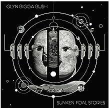 Sunken Foal Stories [Vinyl LP]