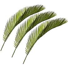 Suchergebnis auf Amazon.de für: palmenblätter deko