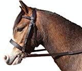 Quality Leather Hunter Bridle With Plaited Browband and Rubber Reins (Black, Cob)