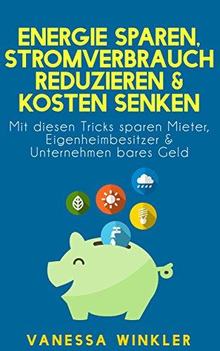 Energie sparen, Stromverbrauch reduzieren & Kosten senken - Mit diesen Tricks sparen Mieter, Eigenheimbesitzer & Unternehmen bares Geld (Ratgeber)