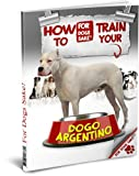 How to Train your Dogo Argentino (English Edition)