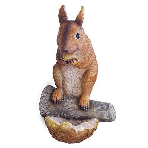 earl-the-realistic-nut-eating-garden-squirrel-ornament-for-tree-or-wall-mount