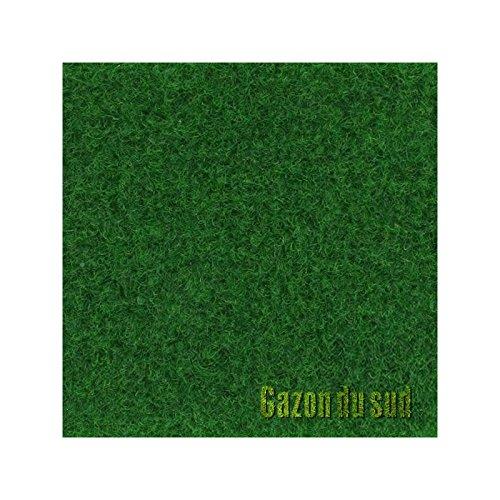 Moquette Easy Green Gazon Synthétique Longueur(s) - 5m, Largeur(s) - 1 m