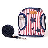 Sanfeng Pet Dog Cat cablaggio e guinzaglio set, denim gilet Pet collari porta perfetto per medie e piccole Pets Kitten Puppy Walking corsa da escursionismo