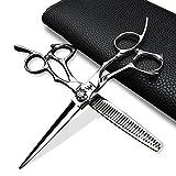 HEMATITE Ciseaux de coiffure professionnels 6 pouces en acier 440C
