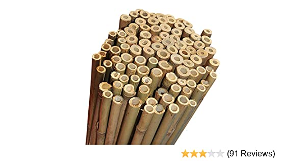 200 X 2FT HEAVY DUTY BAMBOO GARDEN CANES STRONG THICK QUALITY PLANT SUPPORT