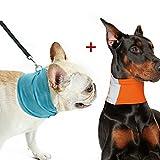 SIEBENEINSY Kühlendes Halstuch Kühlung Handtuch Kühlendes Bandana Plus Reflektierender Hundeschal Sicherheits Dreieck Handtuch 2er Set Kombination für Hunde