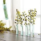 50 Stück 38mm Klare Blumenwasserstandard Rohr Phiolen mit Kappen für Blumen Vorbereitungen