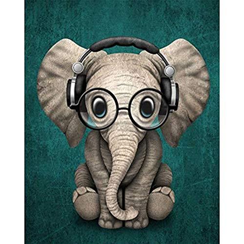 JRSART DIY Ölfarbe Von Number Kit - Bunte Leinwand Malerei Paintworks Bunte Wandkunst Bild Zeichnung Mit Pinsel Dekor Geschenke - Elefantenbaby Mit Brille 40X50Cm - Rahmenlos