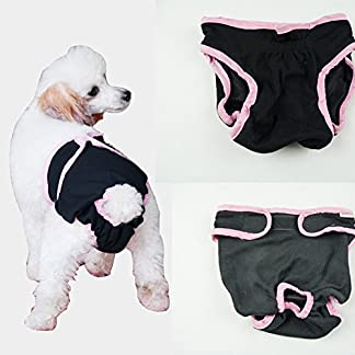 BXT Female Dog Breathable Hygiene Nappy Pants Reuseable& Quickly Dry Sanitary Urine Pads In Season Heat Panties -Black Pink Trim BXT Female Dog Breathable Hygiene Nappy Pants Reuseable& Quickly Dry Sanitary Urine Pads In Season Heat Panties -Black Pink Trim 51mGf13r10L