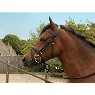 Windsor Equestrian Horses Leather Bridle 7