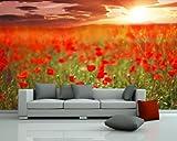 selbstklebende Fototapete - Mohnfeld - 310x200 cm - Wandtapete – Poster – Dekoration – Wandbild – Wandposter - Bild – Wandbilder - Wanddeko