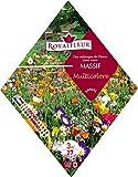 Royalfleur PFRK08354 Graines de Mélange de Fleurs mon Massif Multicolore 3 m²